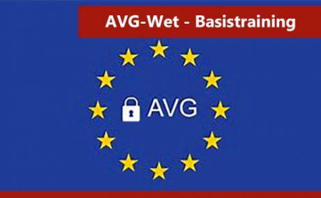 interplein-avg-wet-training